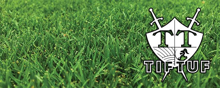 TifTuf Turf Sydney