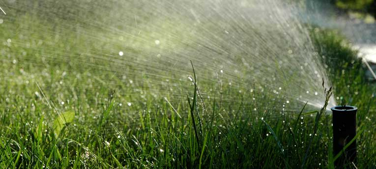 lawn watering restriction exemption