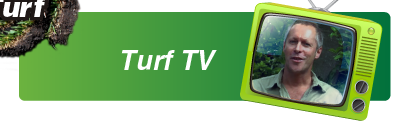 Sir Walter Buffalo Turf TV